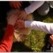 kermaria20120323-011